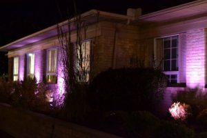 Office lit in purple